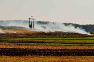 Practică incorectă de incendiere a miriștilor în zona siturilor Natura 2000